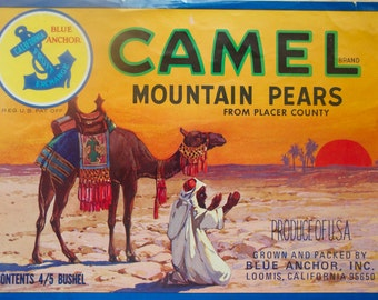 Fruit Crate Label, Vintage Label Art, Camel Mountain Pears, Authentic Advertising Art, Loomis, California, Home Decor