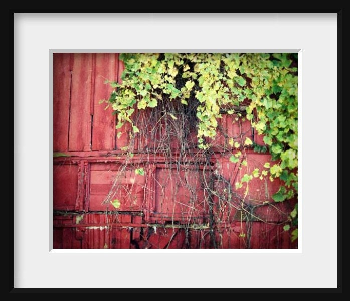 Red Barn Photography Rustic Home Decor Barn By Firstlightphoto Home Decorators Catalog Best Ideas of Home Decor and Design [homedecoratorscatalog.us]