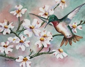 Hummingbird & Dogwoods  5 x 7 Note Card 2 choices Greeting Card Hummingbird Dogwood, watercolor print
