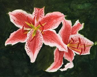 Lily -- Original Watercolor Painting