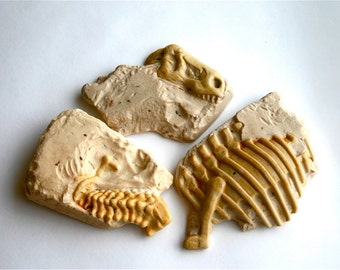 Dinosaur Fossil Candy -3- (salted caramel candy wrapped around dark chocolate and butter toffee)