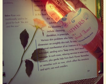Rose Hydrosol Rosewater Mist Facial Toner  2 oz. bottle