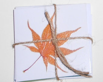 Party Favors Shower Favors Mini Cards Gift Cards Pressed Leaves Fall Leaves Gift Enclosure Cards