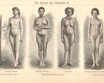 1903 Human Body Shapes - Females Original Antique Engraving