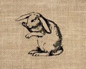 Rabbit 300 dpi Digital Image Download Transfer For T Shirts Totes Napkins 148 Personal and Commercial Use