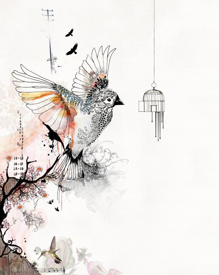 prints illustrations bird cage art living room art by