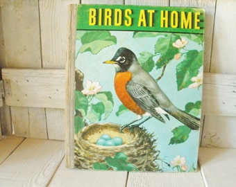Vintage book Birds at Home childrens hardback retro illustrations 1942