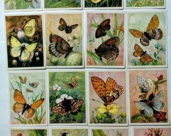 Beautiful Butterflies, Vintage Russian Soviet Postcards set of 16 unused 1985