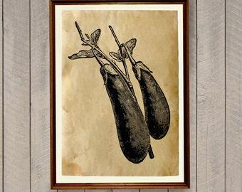 Aubergine print Food poster Kitchen decor AK454
