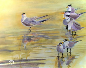 Large original watercolor painting of terns basking in the peaceful light of dawn at the seashore.