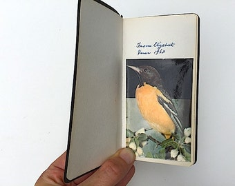 From Elizabeth 1963 - First Bird Pocket Book, Birds of Parks Orchards and Small Woods, Put a Bird On It, BIrd Home Decor,