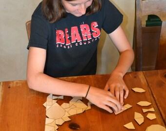 Shape Tiles, Penrose Tiles, Girih Tiles
