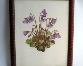Charming Harebells / Vintage Wildflowers / Signed AmTR