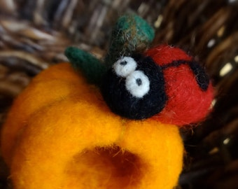 Custom Made Needle Felted Hollow Toy with Critter Inside - Made to Order- Storytime Prop, Gift, Collectible
