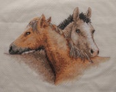 Horses - Completed Cross Stitch Decoration