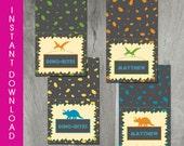 Dinosaur Party, Self Editable, INSTANT DOWNLOAD, Foldable Tent Card, Buffet Card, Dinosaur Printable, Personalize, Diy, Digital Pdf File
