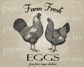 Country decor Chicken Eggs Sign Instant graphic digital download image transfer for iron on burlap decoupage pillow  tote paper No. 1081