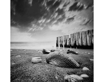 Black And White Pinhole Photography, Englewood Beach - Pinhole Photograph - Sepia -  Beach Decor