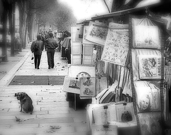Paris Photography, Black And White, The Booksellers Dog, Left Bank - Bouguinistes of Paris - City of lights - Urban Art Print
