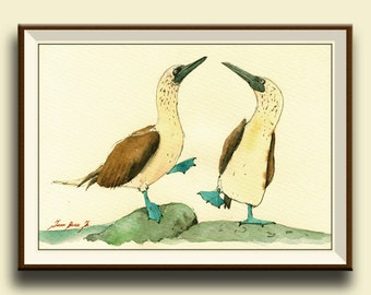 PRINT- Booby Blue Footed boobies bird print watercolor painting art wall bird seabird - Art Print by Juan Bosco
