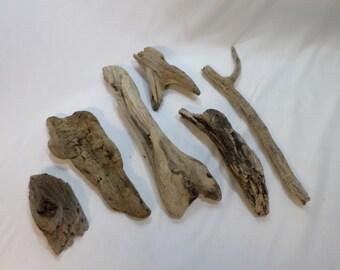 Bulk Driftwood Pieces - 6 Unique Drift Wood Pieces - Craft Supplies - Rustic Decor Project!