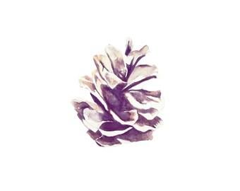 Pine Cone // S A L E