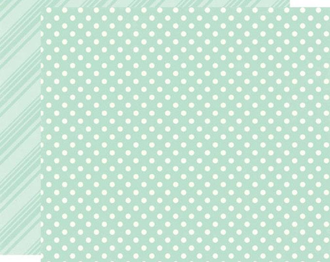 2 Sheets of Echo Park Paper DOTS & STRIPES Spring 12x12 Scrapbook Paper - Robin's Egg (DS15003)