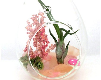 Pink Cherry Blossoms Terrarium™ ~ Housewarming Gift Home Garden Decor ~ Birthday Gifts For Her Mom Sister Best Friend ~ Teacher Gifts ~ Kit