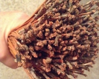 NC Long Leaf Pine Needles - 1/2 pound
