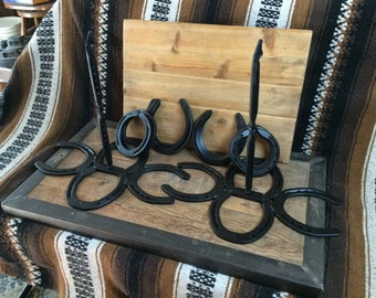 Horseshoe Ring Toss Game