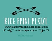 RESIZING BLOG PRINTS from LostBumblebee