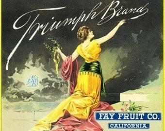 California - Triumph Brand Citrus Label (Art Prints available in multiple sizes)
