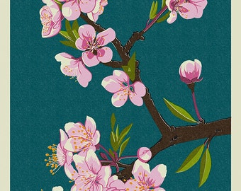Cherry Blossoms - Washington DC (Art Prints available in multiple sizes)