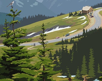 Hurricane Ridge, Olympic National Park, Washington (Art Prints available in multiple sizes)