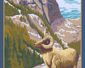 Mt. Evans, Colorado - Bighorn Sheep (Art Prints available in multiple sizes)