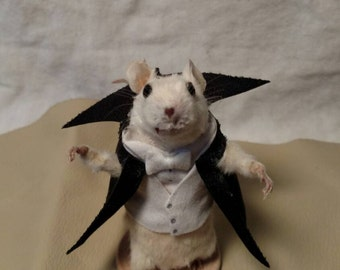Taxidermy mouse dracula