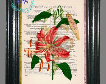 Red Lily Flower Art -  Beautifully Upcycled Vintage Dictionary Page Book Art Print