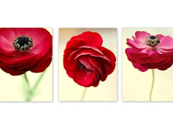 Print Set of 3 Red Ranunculus, bedroom decor, bathroom decor, floral wall art