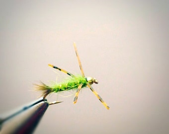 Green Critter - Fly Fishing Flies