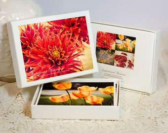 Birthday Gift Idea - Boxed Greeting Cards - Floral Photo Notecards - Greeting Card Set of 8 - Orange Red Yellow Flowers - Nature Note Cards