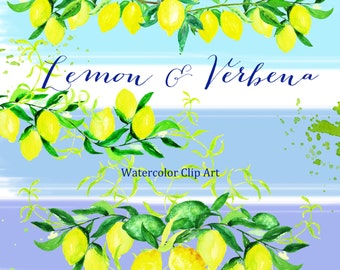 Lemon & verbena watercolor clipart hand drawn. Bright wedding, light green, yellow lemon, fruit wedding invitation, wreath and arrangements.