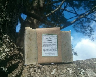Three Brothers Soap (Spruce, Pine & Cedar)