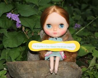 Custom Blythe Doll Photography