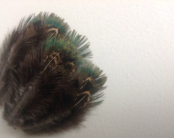 """Green Feathers - Short Feathers With Pretty Patterns - Crafting Feathers - feathers 3"""" inches - 1517"""
