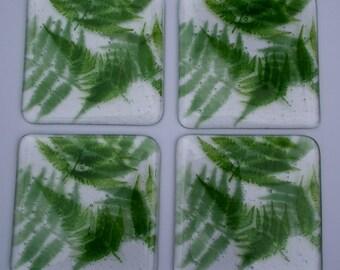 set of 4 fern design coasters