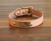 Classic Leather Dog collar with brass nameplate