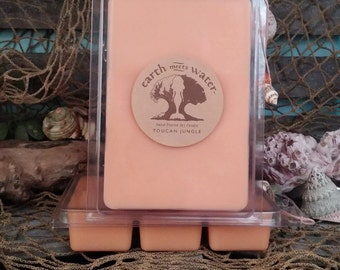 Soy Wax Melts-Toucan Jungle Soy Melts- 6 pack Soy Melts