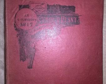 Cymru'r Plant am y flwyddyn 1917
