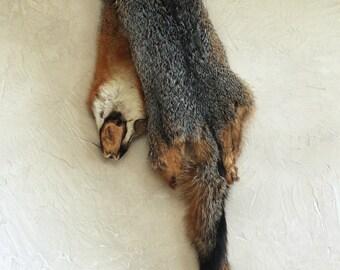 Gray Fox Pelt - Fox Skin - Fur