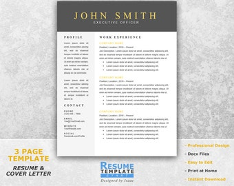 Modern Resume Template Word   CV Templates Word   Cover Letter Templates  For Word T16